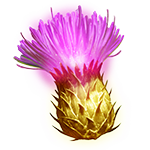 EnrapturedThistle_transparent.png